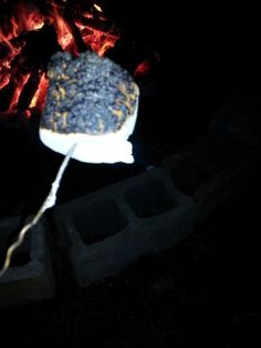 This outrageously bad attempt at toasting marshmallows.