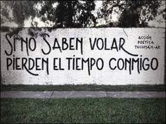 Si no saben volar pierden el tiempo conmigo #Acción Poética Tucumán #accion Street Quotes, Lesson Quotes, Quote Posters, Qoutes, Street Art, Spanish, Around The Worlds, In This Moment, Words