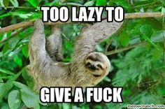 sloth memes - Google Search