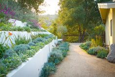 Terraced Gardens with Decomposit Granite Path