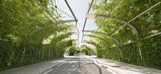 Designed by Jean Nouvel Jean Nouvel, B720, Pergola, Barcelona, Green River, Shade Structure, Urban Landscape, Landscape Architecture, Sidewalk