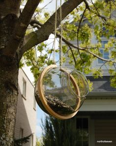 DIY birdfeeder: embroidery hoop and light cover