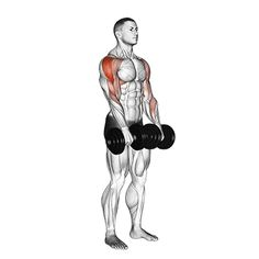 Gym Workout Chart, Gym Workout Videos, Gym Workout For Beginners, Workout Guide, Gym Workouts, Kettlebell Training, Weight Training Workouts, Workout Posters, Chest Workouts