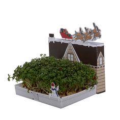 grow your own grotto garden by ohh deer