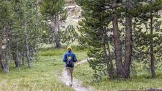 Trail Tips: Minimize your environmental impact on your next hike with a few simple tips from our resident naturalist, a Leave No Trace Master Educator.