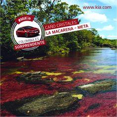 ¿Sabías que el #rio más bello del mundo está en #Colombia? Descubre tu país a bordo de tu #Kia
