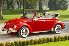 VW Bug Convertible...