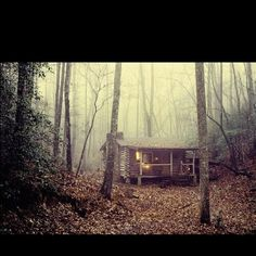 cabin in foggy woods with a hidden Batcave underneath ...
