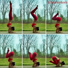 laura sykora yoga | Laura Sykora. forearm stand to baby crow. crazy core strength and balance.