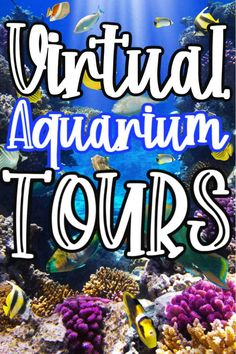 Looking for things to do with the kids from home? One super fun thing is to take Virtual Aquarium Tours To Take with the Kids! There are quite a few Aquariums that give you a close up look at the different exhibits in the aquarium! Home Learning, Learning Activities, Learning Place, Ocean Activities, Educational Activities For Kids, Educational Crafts, Educational Websites, Learning Spanish, Toddler Activities