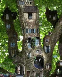 I suspect this is collage, not a real tree house. Fun anyway.