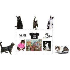 #cats #etsy #etsysellers #EtsyShops #EtsyPolyvore