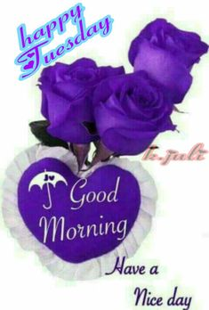 Good Day, Good Morning, Hanukkah, Happy, Tuesday, Bible, Quote, Image, Sayings