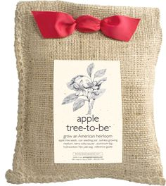 This kit includes everything you need to start and grow your own apple tree! The apple tree is one of the most widely cultivated of all fruit trees. The fruit is medium to large with thin greenish-yel