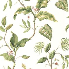 FREE SHIPPING! Shop Wayfair for Brewster Home Fashions Sand Dollar 27' x 27 Eldora Evening Tropics Leaf Floral Embossed Wallpaper - Great Deals on all Decor products with the best selection to choose from!