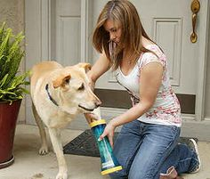 Paw Wash | 30 Things You Had No Idea You Needed