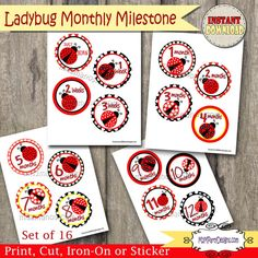 Ladybug Baby Monthly Milestone Stickers / Iron by M2MPartyDesigns