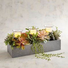 Reserve a special display space and revel in the realism of our handcrafted succulent garden in a simple metal container. Add LED tealights and you've created instant ambience. Succulent Centerpieces, Candle Centerpieces, Succulent Arrangements, Succulent Table Decor, Faux Succulents, Succulents Garden, Succulents In Containers, Led Tea Lights, Tea Light Candles