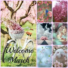 Welcome March ☆♡ ⭐️☆♡ ~*💕