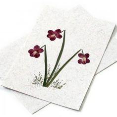 Pressed Dried Flower Crafts | ... flower handmade cards 5x7 paper crafts pressed dried flower iris