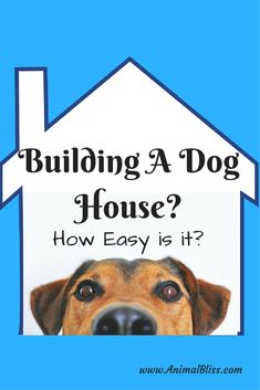 Are you planning on building a dog house? Are you a do-it-yourself type? Perhaps you'll need a dog house kit. Consider these options. Read on Dog Training Methods, Basic Dog Training, Dog Training Techniques, Training Your Puppy, Training Dogs, Dog House Kit, Build A Dog House, Puppy Obedience Training, Positive Dog Training