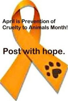 April is Prevention of Cruelty to Animals Month!