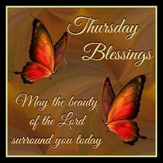Thursday Blessings! May the beauty of the Lord surround you today.