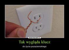 Tak wygląda klucz – do życia pozaziemskiego Hetalia, Funny Images, Funny Pictures, Polish Memes, Funny Mems, Old Memes, School Memes, Read News, Wtf Funny