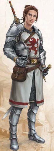 f Paladin w plate swords