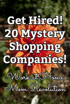 20 Mystery Shopping Companies: Get Paid to Sh - Quilling Paper Crafts Ways To Earn Money, Earn Money Online, Online Jobs, Way To Make Money, Money Saving Tips, Money Tips, Money Budget, Money Hacks, Earning Money
