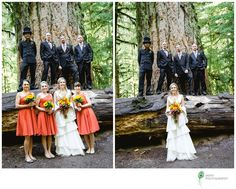 http://jades.ca/blog-photographer-victoria-bc/2013/11/25/ashley-richard-married-at-cathedral-grove