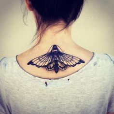 A moth is drawn to our fluorescent lights because it is the next best thing to the lunar moon. They never give up faith that they will reach their moon, although they are being pained during the journey. Never give up is what this moth signifies.