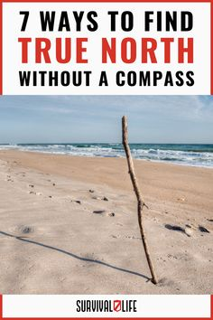 If push comes to the shove and you need to find the true north without a compass, you must know how to do that to survive. We'll tell you how today! Survival Hacks, Survival Life, Camping Survival, Survival Skills, Life Tips, Life Hacks, Outdoor Shelters, True North, Safety Tips