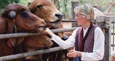 """Las importantes lecciones del curso """"Comparte el mundo"""" sobre empatía, compasión hacia los animales y la Regla de Oro están disponibles en español para los profesores. ¡Míralas!"""