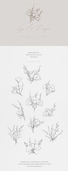 What's included: 26 floral pencil sketches (Ai/EPS/PNG) 10 graceful arrangements (Ai/PNG) 10 detailed watercolor illustrations (PNG, 300 dpi) Bonus watercolor background textures and swashes PNG, 300 dpi) Watercolor Texture, Watercolor Background, Watercolor Flowers, Painting Flowers, Watercolor Painting, Watercolors, Flower Sketch Pencil, Flower Sketches, Watercolor Illustration