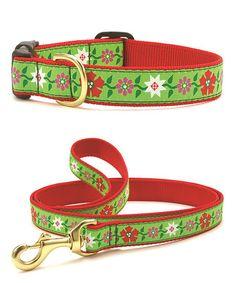 Love this Poinsettia Pet Collar & Leash on #zulily! #zulilyfinds