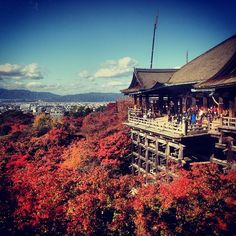 Kiyomizu-dera is one of my favorite places in my adopted hometown of Kyoto. Regardless of the season you will find it interesting and beautiful. The views of Kyoto from the temple make it worth the climb!