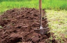 глинистый участок, глинистая почва +на участке,глинистая почва +как улучшить,