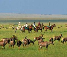 Kenya - Horseback Riding Safari in Masai Mara