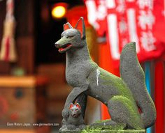 Fox at Shinto Shrine in Tokyo Asian Fox, 9 Tailed Fox, Japanese Fox, Fox Images, Fox Girl, Visit Japan, Deities, Akira, Illustration