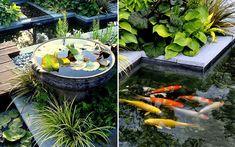 Minimalist Koi Fish Pond Design In Garden With Fountain Best design minimalist pond in a narrow area garden design Outdoor Fish Tank, Outdoor Fish Ponds, Ponds Backyard, Backyard Pergola, Pergola Kits, Gazebo, Fish Pond Gardens, Small Gardens, Outdoor Gardens