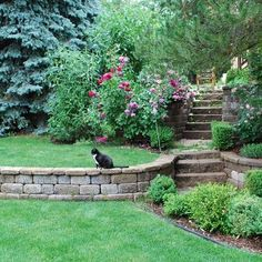 1000 images about tiered garden on pinterest retaining for Tiered garden designs