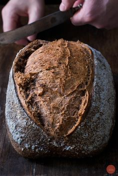 Grape seed flour & whole wheat flour bread