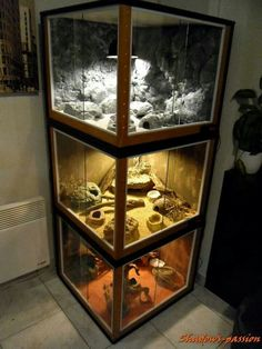 Love. Stacked reptile enclosures