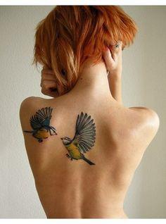 Des colibris colores