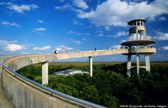 Bike through the Everglades National Park and climb the Shark Valley observation tower in Florida. Been there so many times. It is an escape into wild habitat.