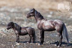 Kavioiden kopsetta & koparoiden naksetta: Huovutettujen hevosten lauma  Needle felted horses