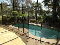 Pool Safety Fence Ocoee, FL