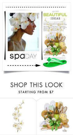 """Spa Day"" by conch-lady ❤ liked on Polyvore featuring beauty, Pier 1 Imports, Circo and spaday"