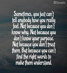 But because you can't find the right words to make them understand. #Zorpia #Life